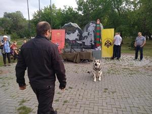 День фронтовой собаки в Челябинске